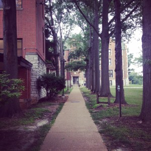 The pathway we walked from the dorms to the dining hall.